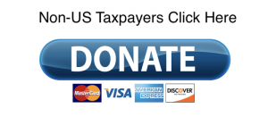 Donate button for Non-US Taxpayers